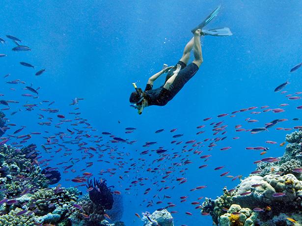 Barotraumatisme : quels sont les risques de la plongée sous-marine ?